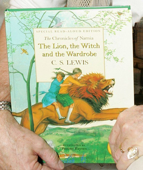 The lions share childrens book