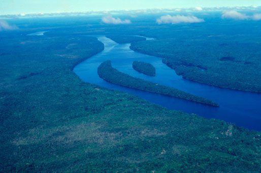 ready for an amazing outdoor adventure with nat geo kids then check out our awesome amazon facts as we head into the depths of the amazon rainforest