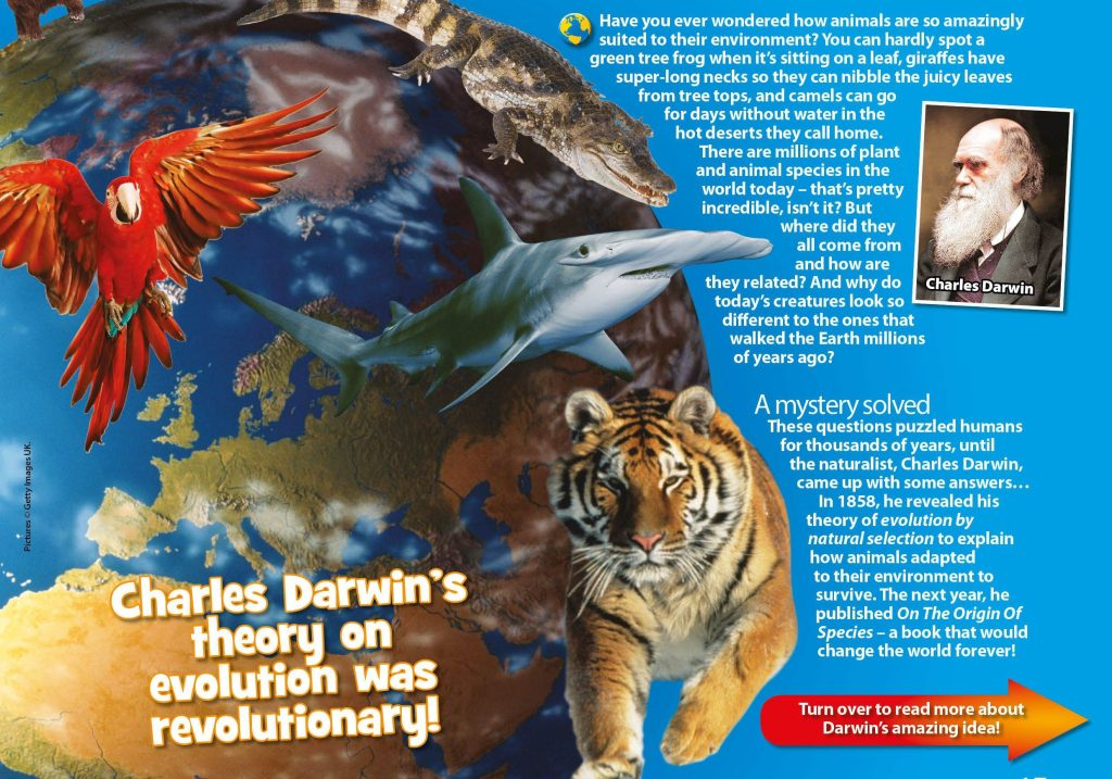 Charles Darwin S Theory Of Natural Selection For Kids