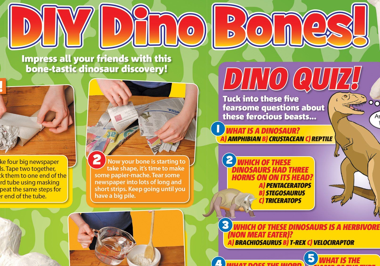 Dinosaurs Make Your Own Dino Bone National Geographic Kids