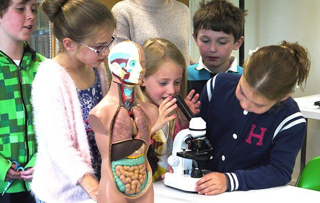 sciencedipity - children playing with experiment