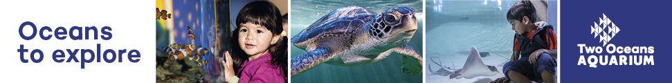 2 Oceans Aquarium (September)
