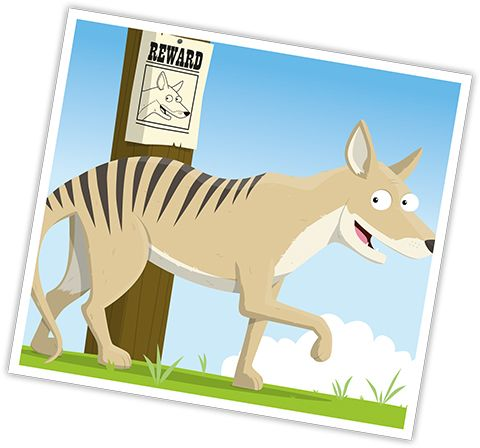 Extinct Animals - Thylacine
