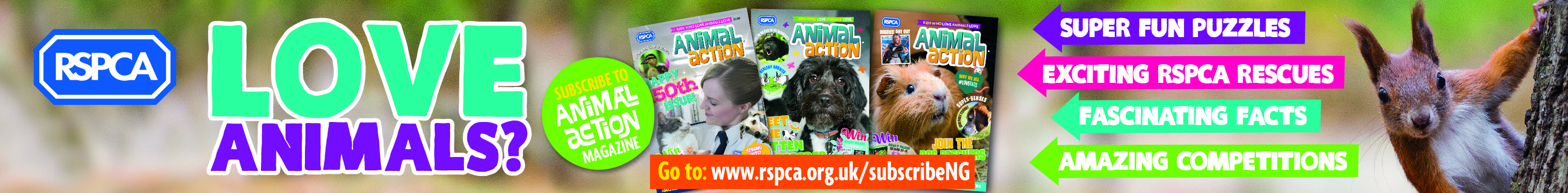 RSPCA Autumn Campaign