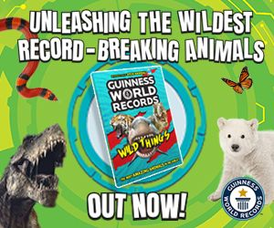Guinness Animals