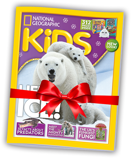 National Geographic Christmas Cards.National Geographic Kids Christmas Subscriptions