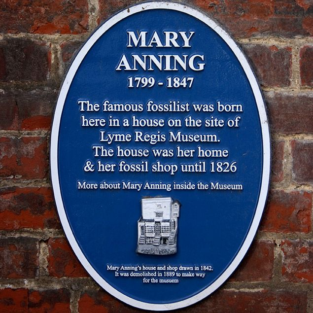 11-year-old fighting for a statue of Mary Anning: Blue Plaque on Mary Anning's former fossils shop