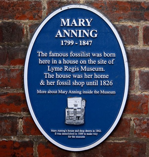 Mary Anning facts: Blue Plaque marking the location of Mary Anning's home and fossil shop