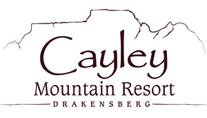 Cayley Mountain Resort competition: logo