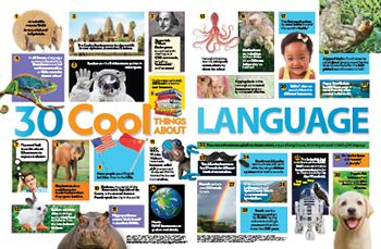 Language facts primary resource - small image