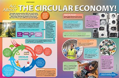 The Circular Economy Primary Resource Small Image
