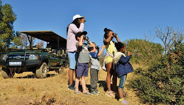 Safari Plains 2