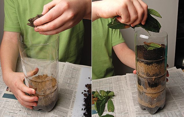 How to make a wormery steps 2 and 3