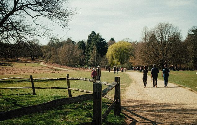 a wide path leads into a big open park, with woodlands in the background and a large grass meadow in the foreground. People are walking along the path, dressed as if they were out for a stroll in jackets and hats.