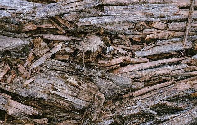 a pile of rotting wood stacked haphazardly