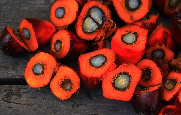 what is palm oil | orange fleshy fruits, with a white centre ringed with black